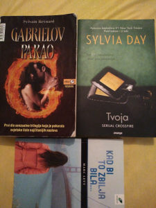 3 knjige Gabrielov pakao, Tvoja, Kad bi to zbilja bila