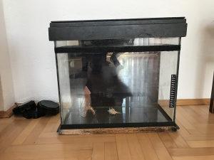Akvarijum i oprema