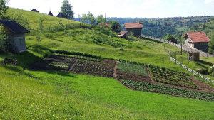 Prodajem 2 vikendice sa zemljištem Nišići-Čevljanovići