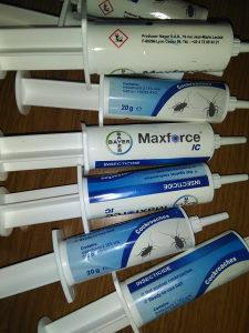 Maxforce ic gel otrov zohara-zohari-zohare-zohar