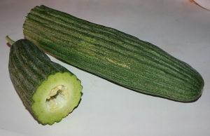 Jermenski tamni dugi krastavac / 10 semena