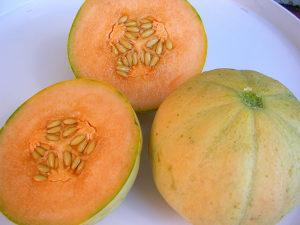 Dinja `Charentais`/ 10 semenki