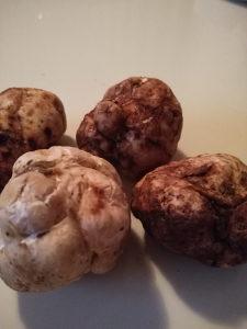 Bijeli tartufi