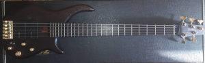 Roland CUBE 100 BASS   Warmoth 5 bass - BOSS FS-6