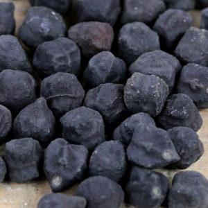 Afganistanski Crni naut / 15 semena