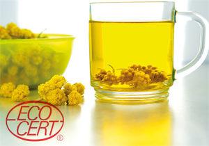Eterično ulje Smilja - Smilje