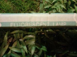 Fluorscent lamp 20cm