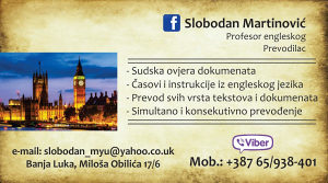 Profesor Engl. jezika, casovi, prevodilac, sudski tumač
