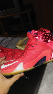 LeBron James 12(Original)