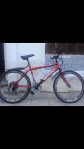 Biciklo Bozzano