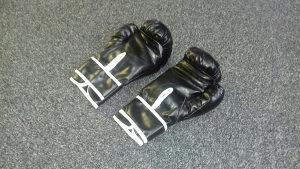Rukavice za boks 10 OZ 062/546-546 box