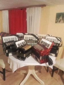 Sve vrste školskih harmonikaod 32 do 140 basova !
