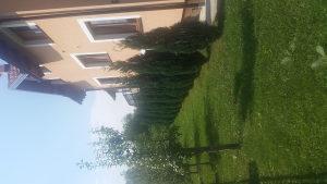 Kuca u Osjeku, Ilidza,4km od Vrela