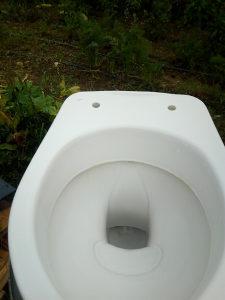 WC solja