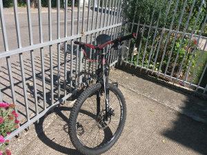 Focus biciklo