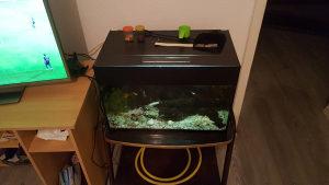 Akvarij sa ribicama,100l,pumpa