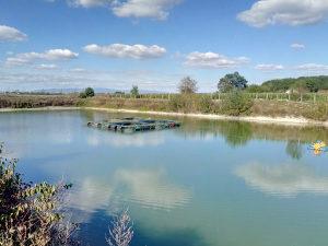 Ribnjak imanje jezero