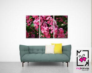 Kanvas slike - Motiv cvijet 13