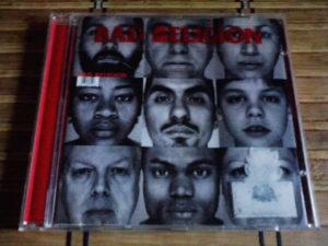 Bad Religion – The Gray Race cd