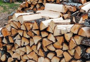 Drva ugalj