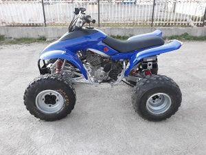 ATV Quad Honda TRX 300