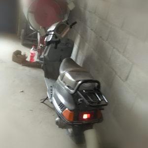 Yamaha Beluga