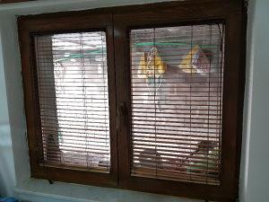 Stolarija prozori drveni