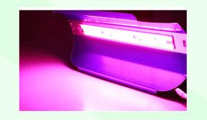 LED GROW COB 50W Full Spectrum 220V