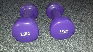 Bucice 2x2.50kg ljubicaste