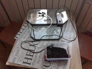 Akvarij za ribice 10l s filterom i pijeskom