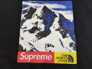 Supreme tanji duks The North Face
