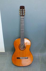 Fender FC-10 Akusticna klasicna gitara