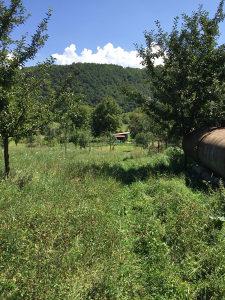 Zemljište zemljiste zemlja polje Gorazde