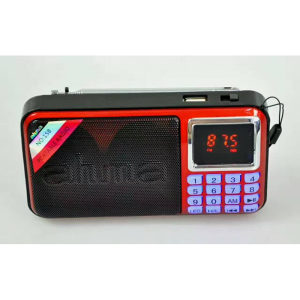 punjivi ahma digitalni radio mp3 usb kutija box