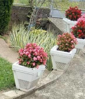 Saksije za cvijeće