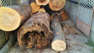 Ogrevno drvo rezanje pilanje drva