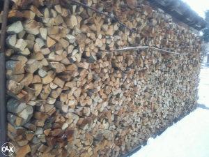 bukova drva